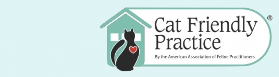 Cat Friendly Practice Banner